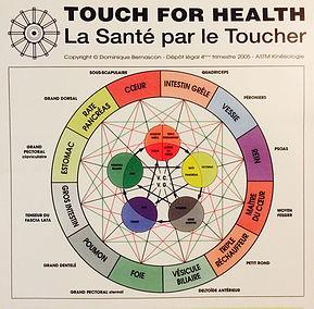 La santé par le toucher kinésiologie