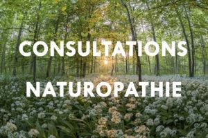 Naturopathie Belfort : Retrouvez la santé de façon naturelle à ESIH (Giromagny)