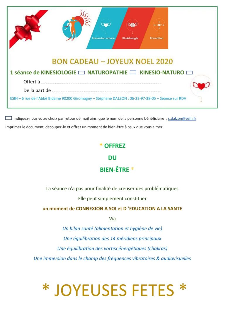 cadeau bon Noël naturopathie et kinésiologie